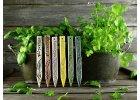 Zápich na bylinky eukalyptus