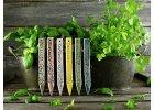 Zápich na bylinky koriandr