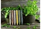 Zápich na bylinky levanduľa