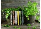 Zápich na bylinky pažítka