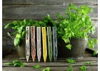 Zápich na bylinky pažitka