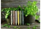 Zápich na bylinky rosemary
