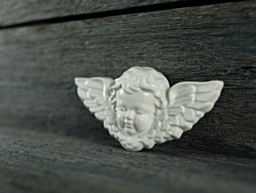 andílek bílý