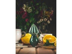 citrusovac oliva