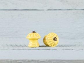 mini žlutá