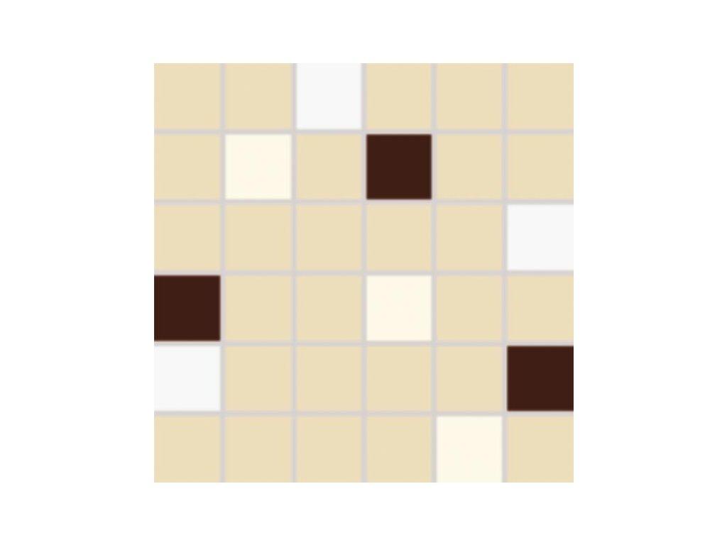 Concept Plus mozaika WDM05008 lesklá