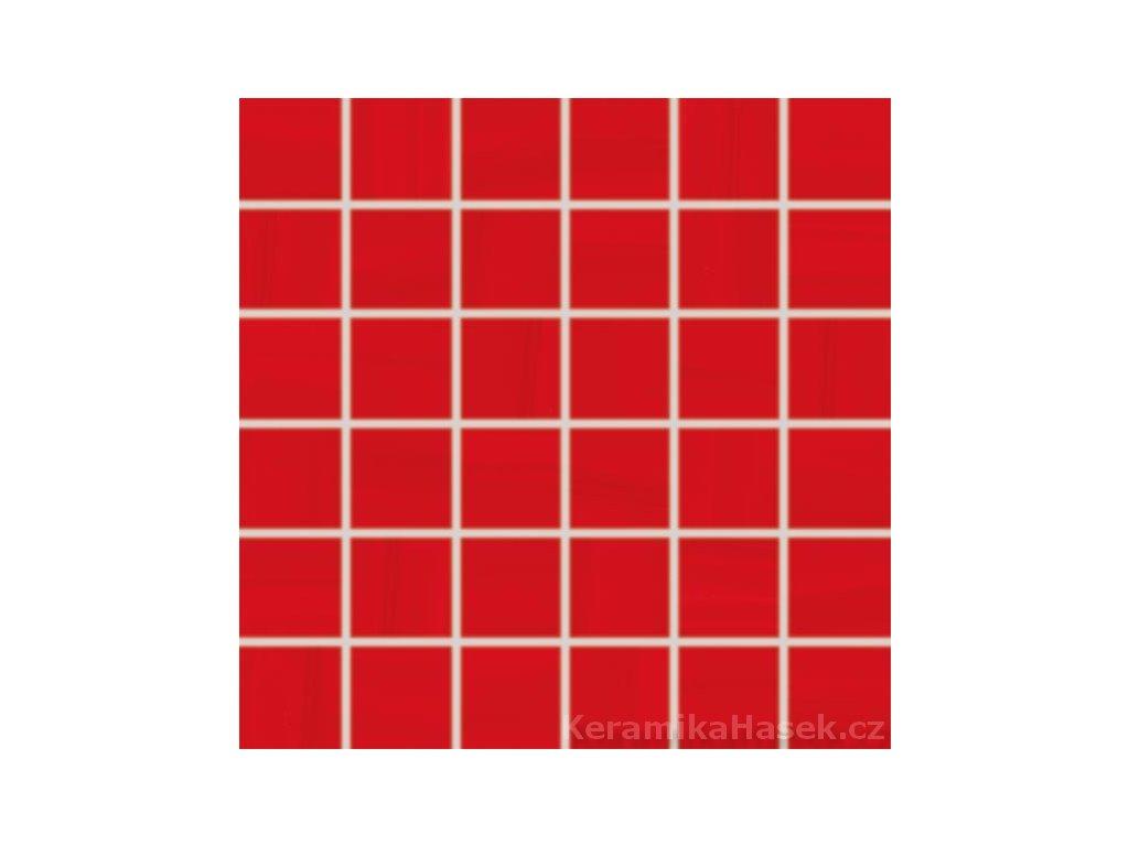 WDM06041 mozaika