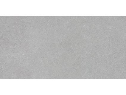 Daisen light grey rec.30x60 SG211200R