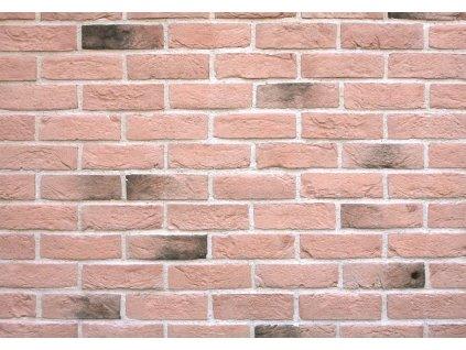 Fasádní obklad obklady Holland brick 301 Lazio Wild Stone