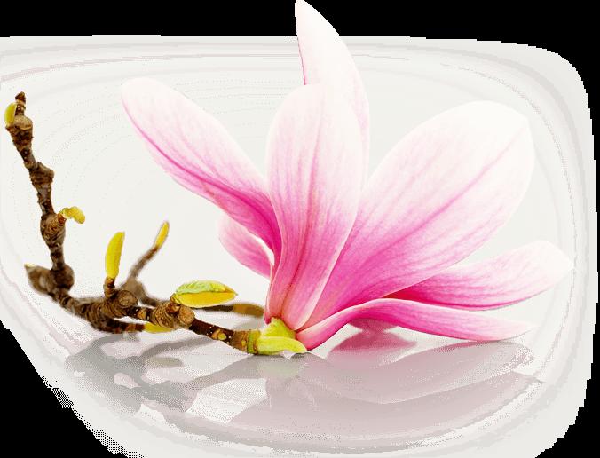 Vonné vosky s květinovou vůní - Blooming Garden