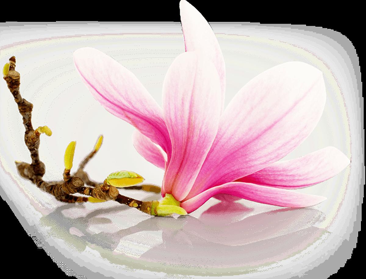 Vonné svíčky s vůní květin - Blooming Garden