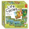 54345 life cycles new box