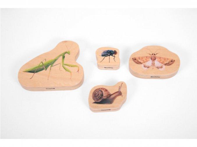 Wooden minibeast blocks