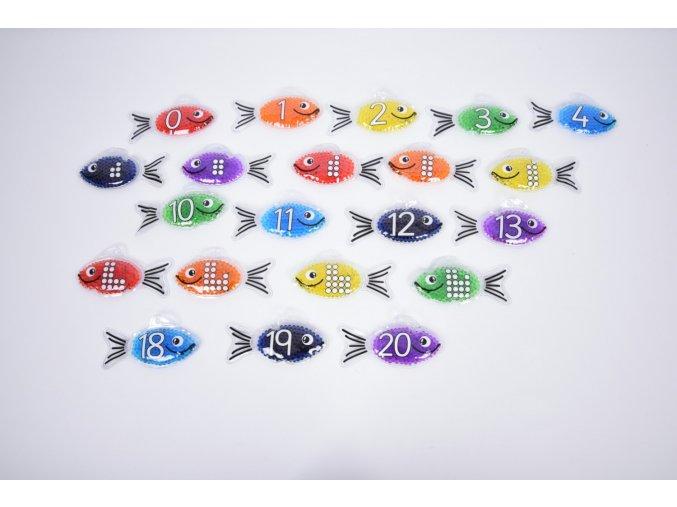 Duhové ryby s čísly  / Rainbow gel number fish