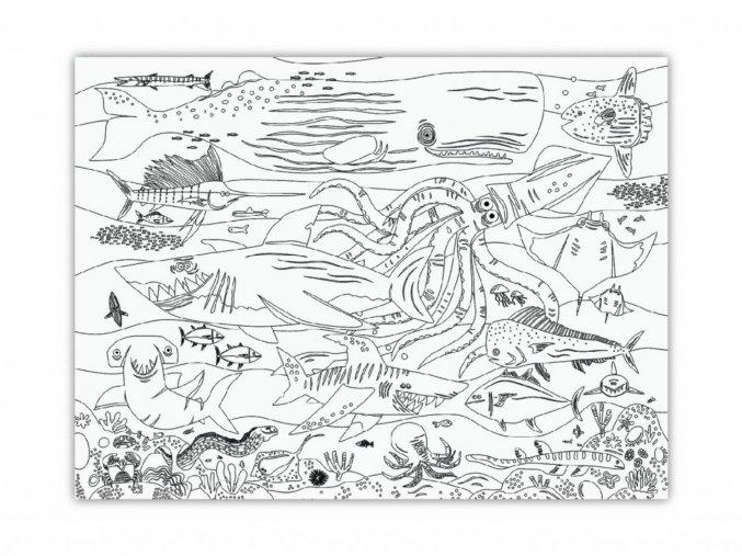 Velký plakát na vybarvování - Žraloci / Giant Coloring Poster - Shark Reef