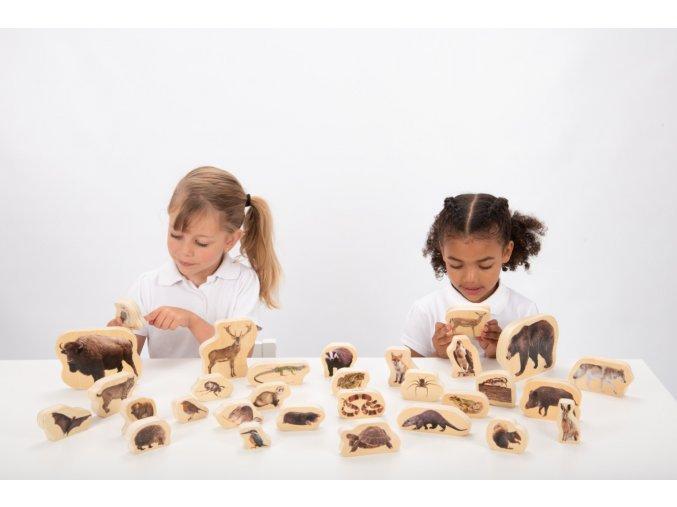 Dřevěné zvířátka - Les / Wooden forest animal blocks