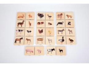 Dřevěné pexeso - Domácí zvířata (28 ks) / Domestic animal family match (28 pc)