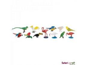 Plan Toys - Tuba - Exotické ptactvo