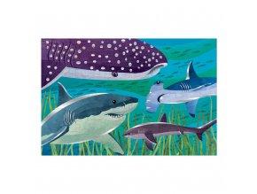 Puzzle s fólií - Žraloci / Foil Puzzle - Sharks (100 dílků)