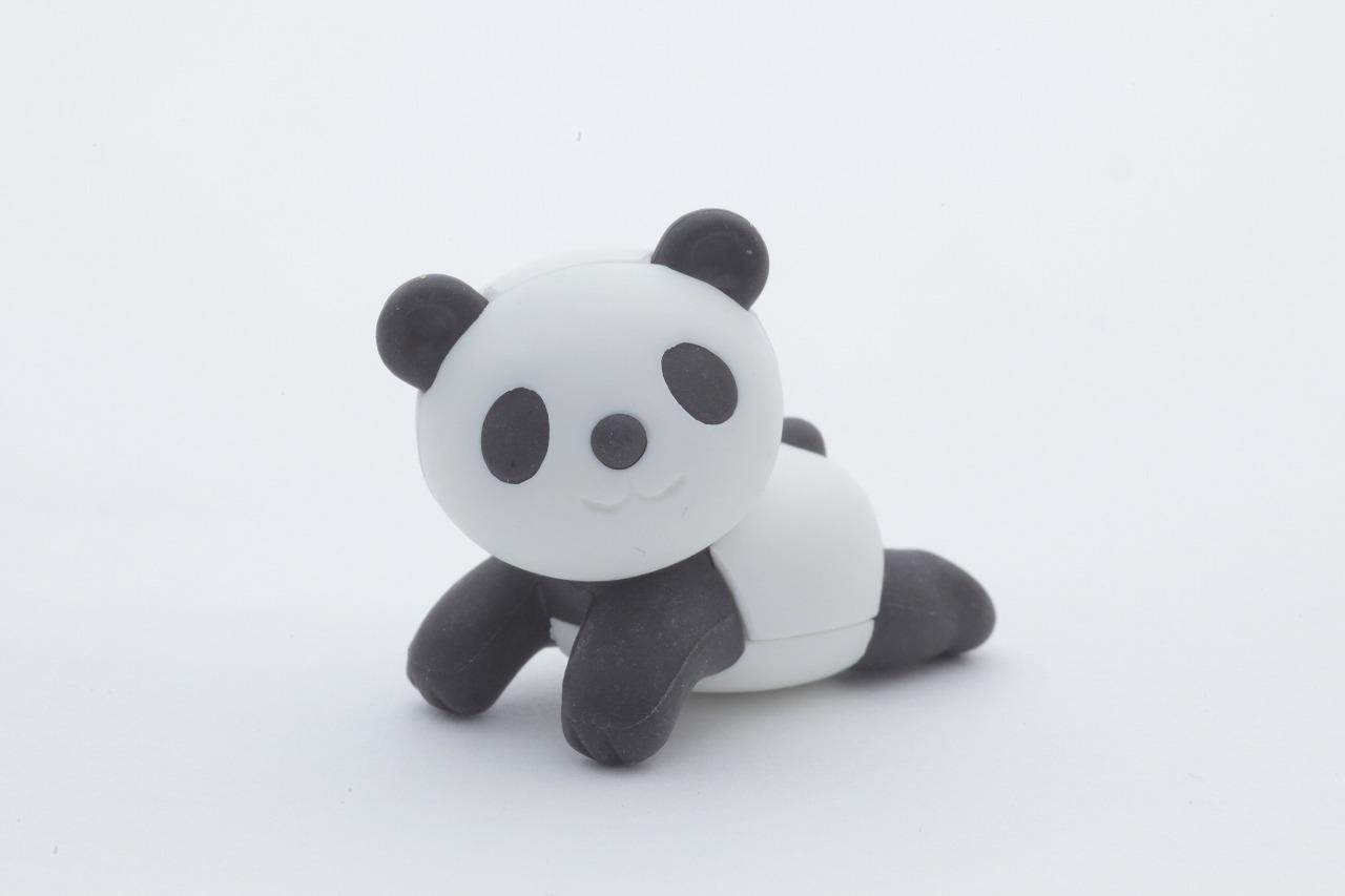 Iwako Gumy / Forest Fellows – panda