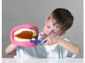 Obří zuby a kartáček (Giant teeth demonstration set)