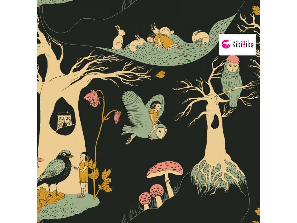 čarovný les cerný 1