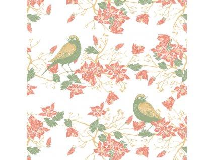 carovny les ptacci 1