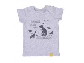 Tričko s krátkým rukávem Dinosauři_S85846 (Barva & Vzor MENTOLOVÁ, Velikost 12 - 18 MĚSÍCŮ)
