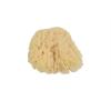 139149 1 prirodni morska myci houba s97399
