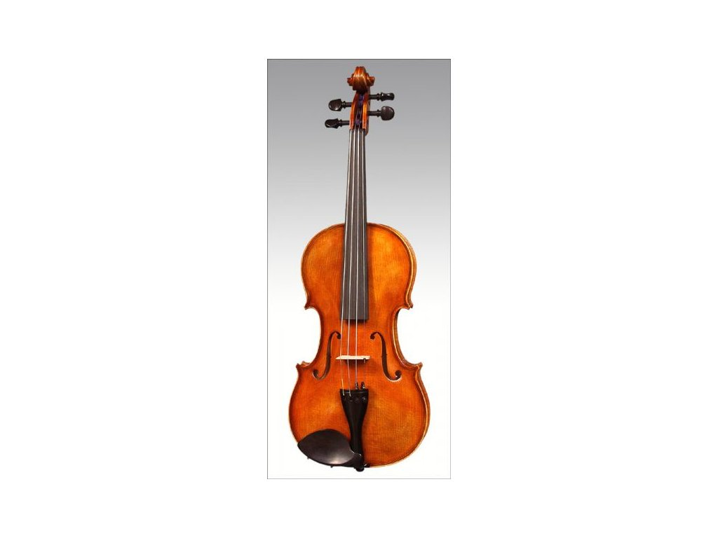 Housle Ars Music 029A