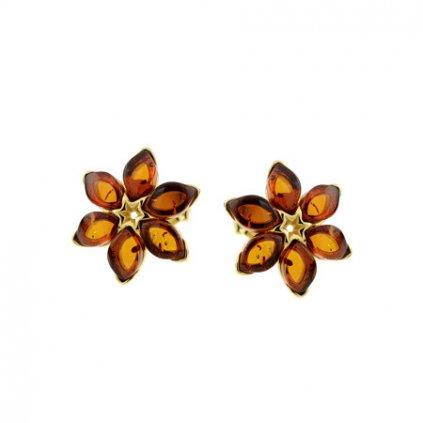 náušnice květiny jantar zlaté
