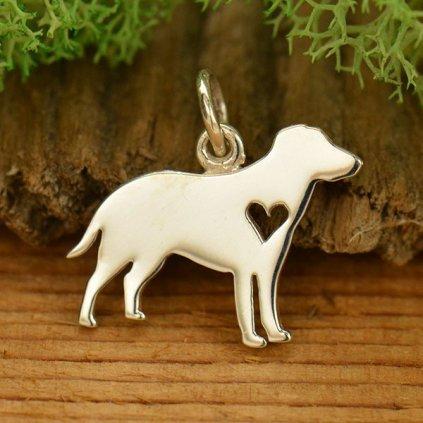Stříbrný přívěsek Labrador Retrívr