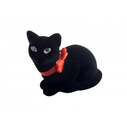 krabička kočka