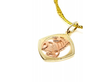 57261 elegantni zlaty privesek znameni stir