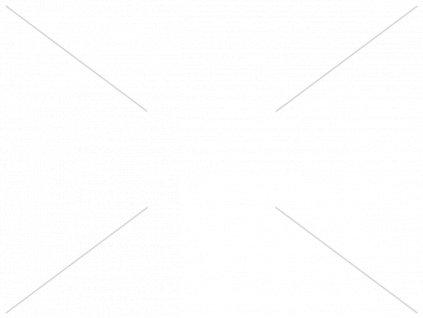 Šroubovák plochý 3,5x80 - Narex Bystřice 800801