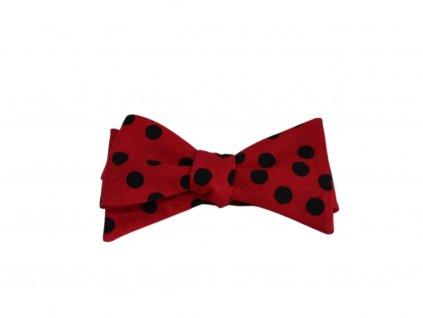 Červený motýlek s černými puntíky