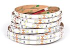 LED pásiky biele 24V - do 20W