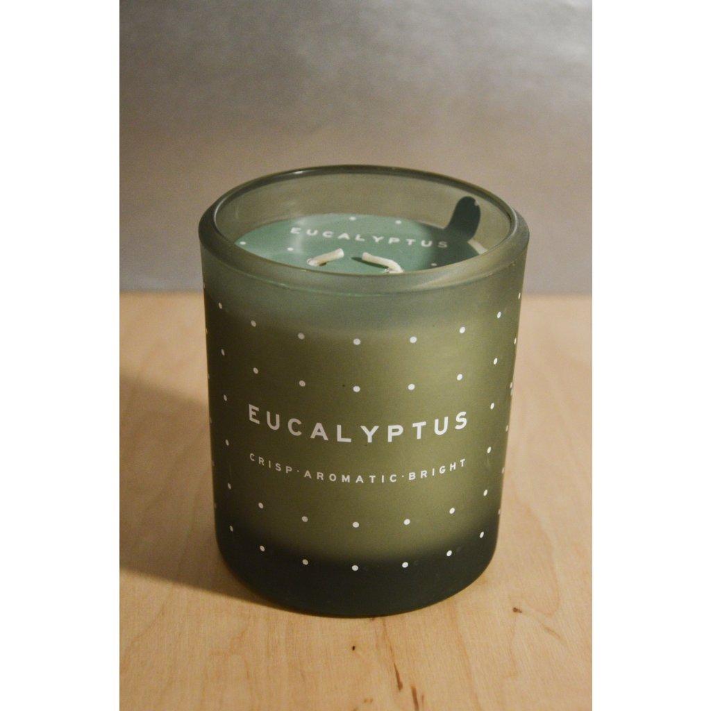 Svíčka ve skle Eucalyptus - eukalyptus