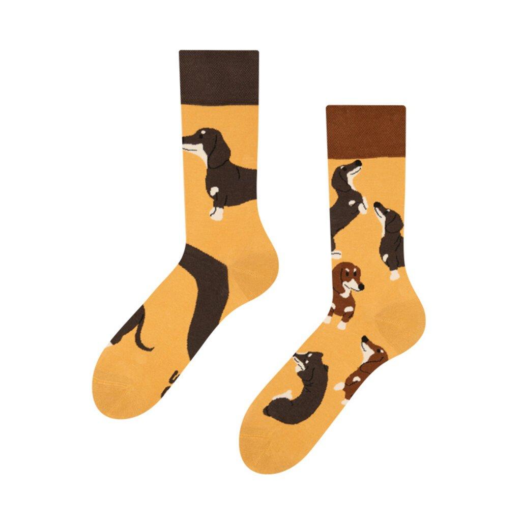 Ponožky Jezevčík