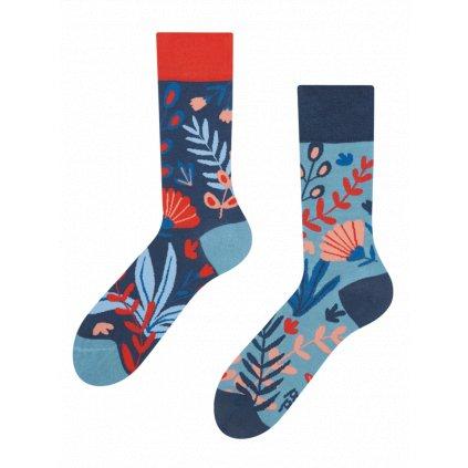 Ponožky Korály