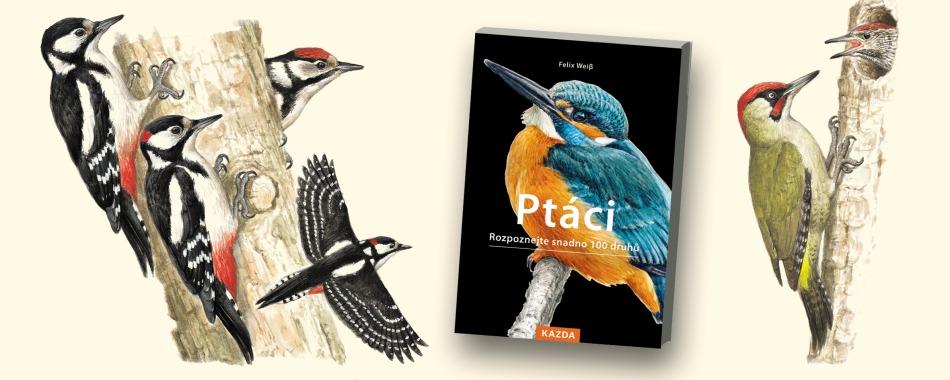 PRO VŠECHNY MILOVNÍKY PŘÍRODY - Rozpoznejte snadno 100 druhů ptáků