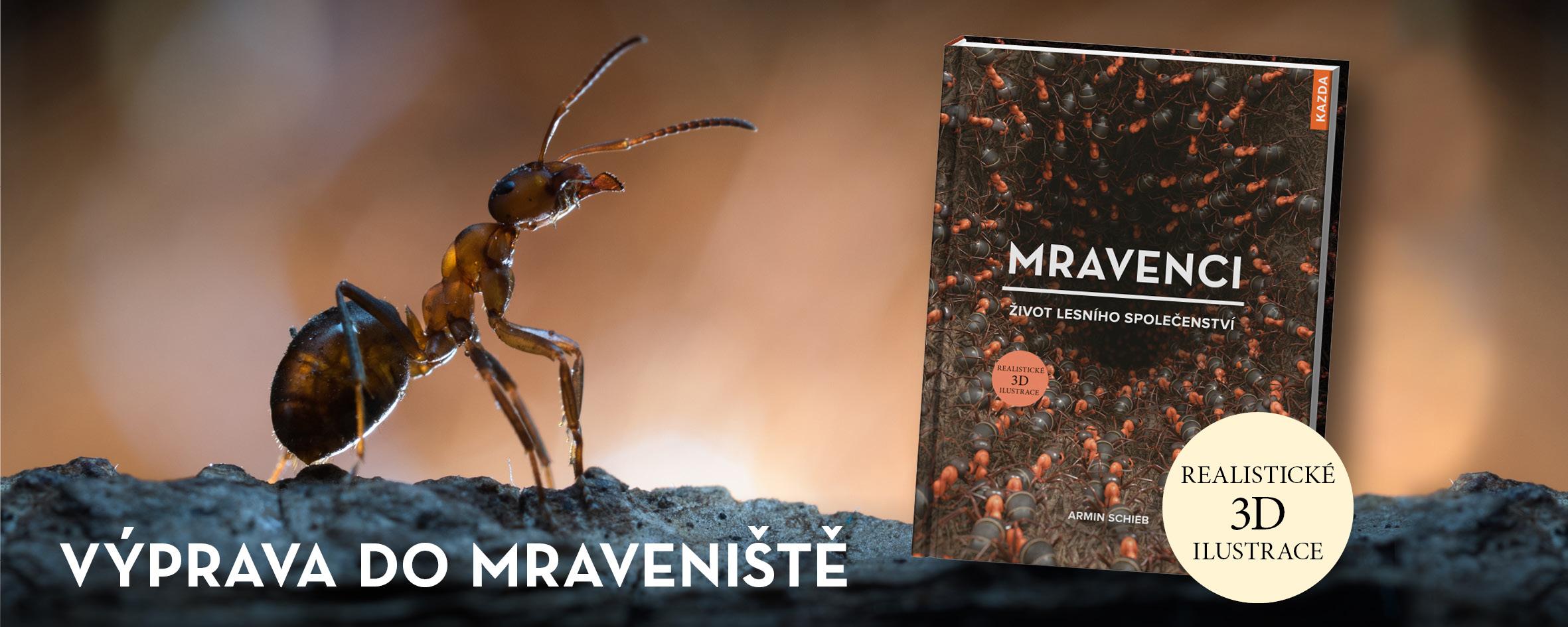 Seznamte s mravenci ve 3D světě