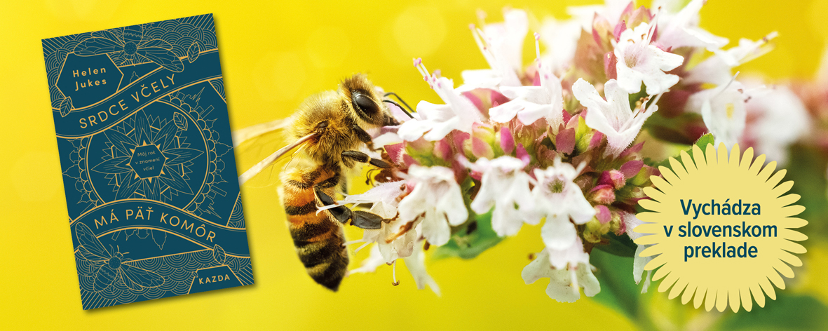Srdce včely má päť komôr