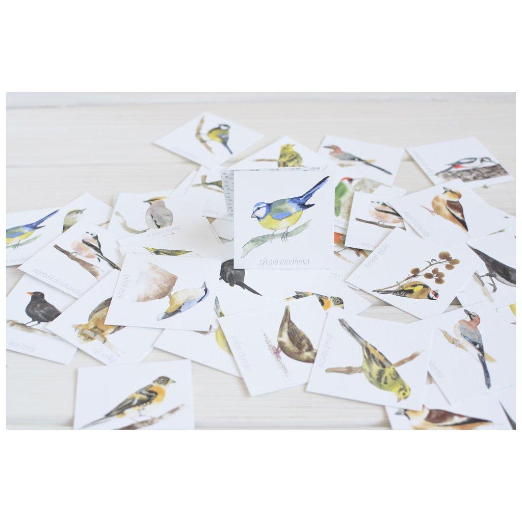 pexeso ptaci krmitka1