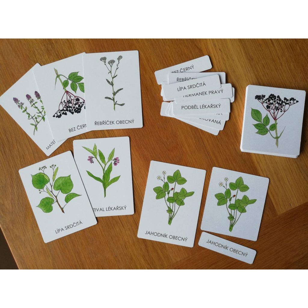 120 trislozkove karty lecive rostliny