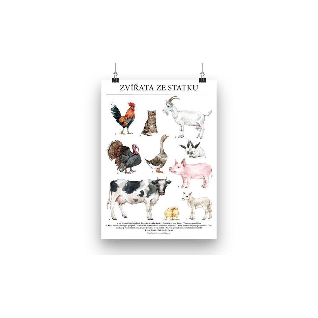 Plakát zvířata ze statku