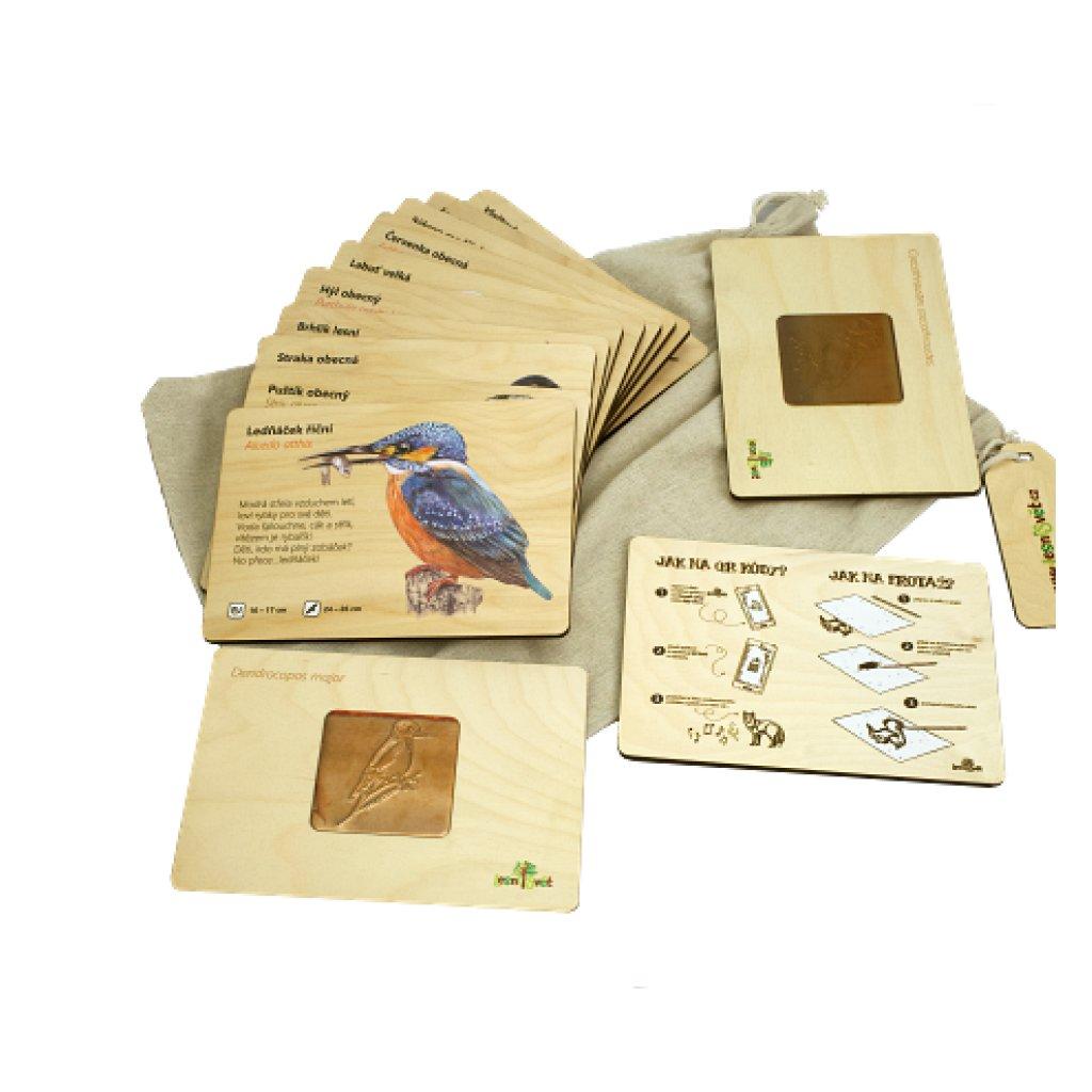 13929 frotazova sada ptaci