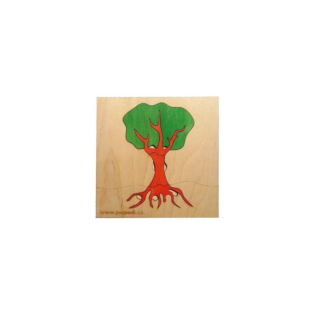 100 strom