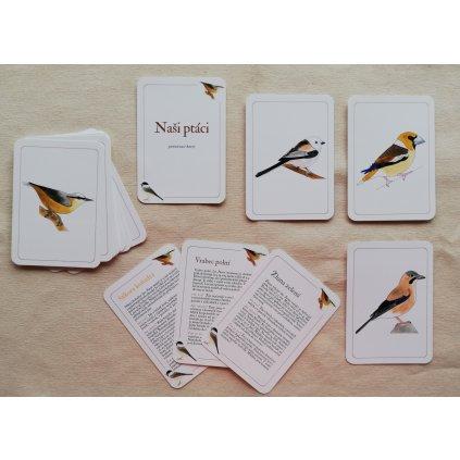 87 nasi ptaci