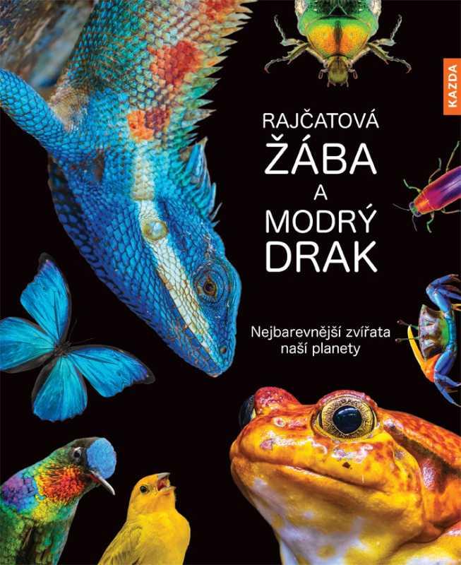 Andrea Köhrsenová: Rajčatová žába a modrý drak